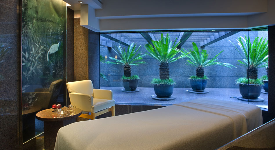 Plateau Spa Hyatt Hong Kong Luxury Travelers Guide
