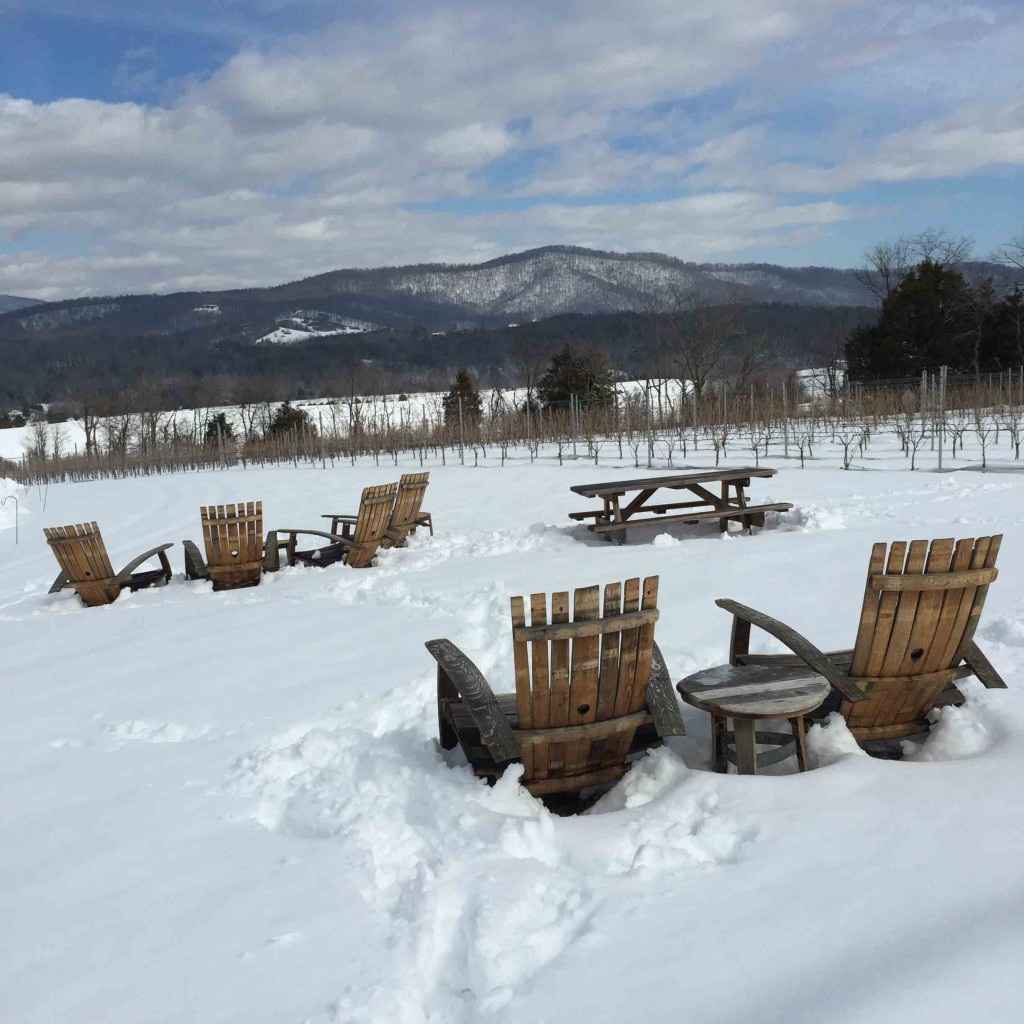 Stinson chairs in snow as statedin