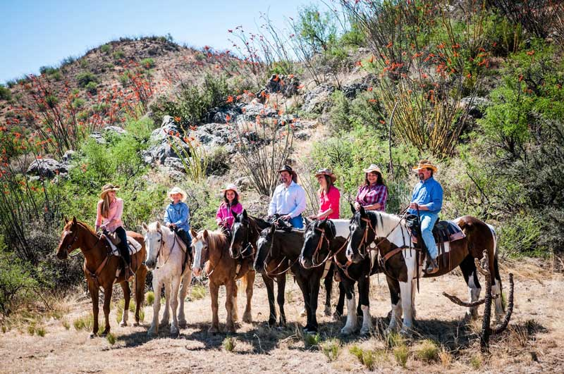 Elkhorn-DUde-Ranch-Arizona-Activities