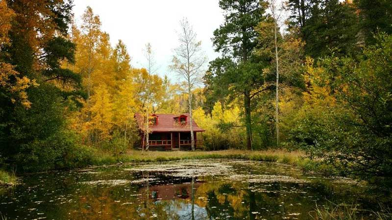drowsy-water-cabin-and-a-pond